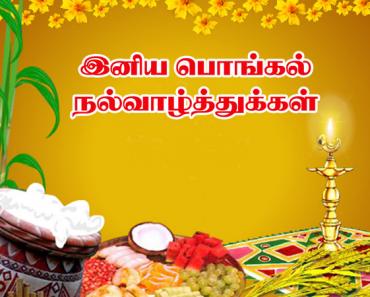 thai pongal wishes